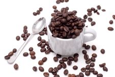 Free Cofee Seed Royalty Free Stock Images - 4971209