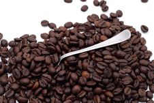 Free Cofee Seed Royalty Free Stock Photos - 4971248