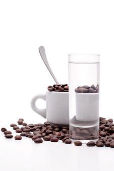 Free Cofee Seed Royalty Free Stock Photos - 4971368