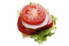 Free Sandwich Stock Photography - 4973162