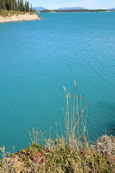 Free Beautiful Blue Royalty Free Stock Image - 4973306