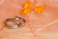 Free Wedding Rings In Roses Royalty Free Stock Photography - 4973387