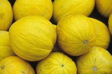 Honey Melon Stock Photo
