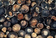 Free Logging Pallette Stock Images - 4979184