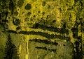 Free Background Royalty Free Stock Image - 4986876