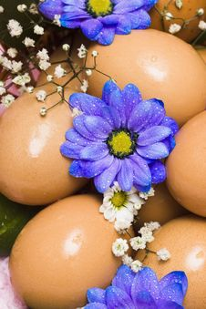 Free Easter Egg With Blue Flowers Royalty Free Stock Photography - 4981927