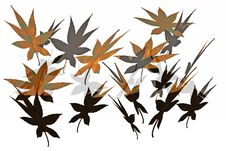 Abstract Leaves Background. Stock Photo