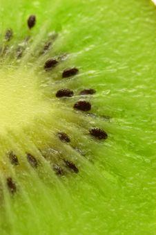 Free Kiwi Slice Stock Photos - 4981983