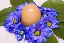 Free Easter Egg With Blue Flowers Royalty Free Stock Photos - 4982038