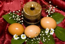 Free Easter Eggs With White Flowers Royalty Free Stock Photos - 4982078