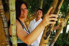 Free Bamboo Couple Royalty Free Stock Photo - 4982695