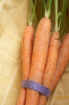 Free Organic Carrots Royalty Free Stock Images - 4983589