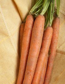 Free Carrots Stock Photo - 4983610