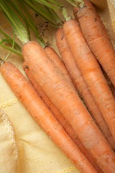 Free Carrots Stock Photography - 4983622