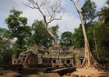 Free Cambodia Stock Photo - 4983960