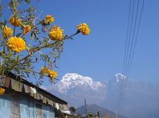 Free Sights Of Nepal 8 Royalty Free Stock Photos - 4984738