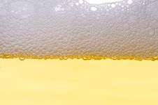 Free Background From Fresh Foamy Beer. Stock Images - 4985904