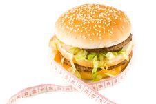 Free Hamburger Stock Image - 4986041