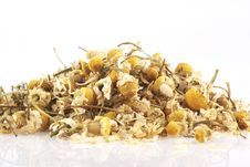 Free Chamomile.. Stock Photography - 4987202