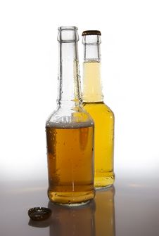 Free Beer Bottles Stock Images - 4988314