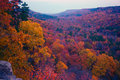 Free Miles Of Autumn Royalty Free Stock Images - 4990699