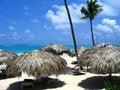 Free Dominic. Beach Royalty Free Stock Photos - 4995068