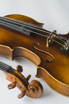 Free Violin On White Background Royalty Free Stock Photos - 4990348