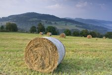 Free Bails Of Hay Stock Image - 4992081