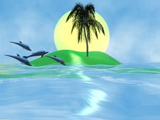 Free Dolphin And The Sea Royalty Free Stock Images - 4993139