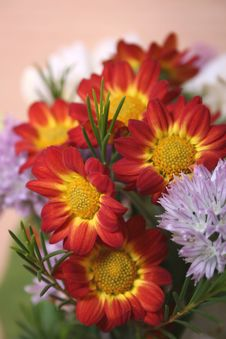 Free Flowers Bouquet Stock Image - 4994211