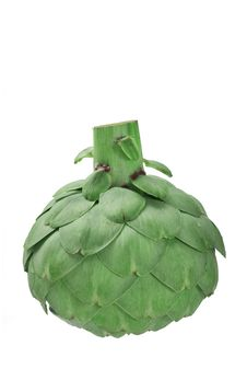 Free Globe Artichoke Upside Down Stock Images - 4997394