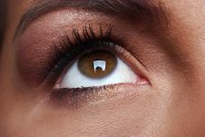 Free Brown Eye Royalty Free Stock Images - 4997449