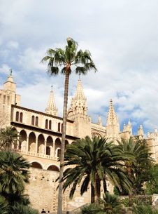 Free Gothic Cathedral And Palms Royalty Free Stock Images - 4997929