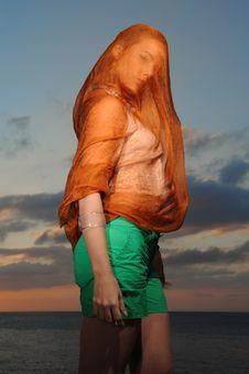 Free Veiled Beauty Stock Photography - 4999392