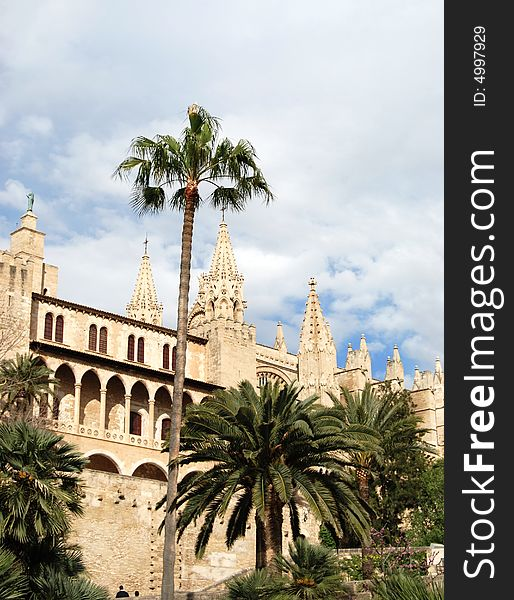 Gothic Cathedral and palms