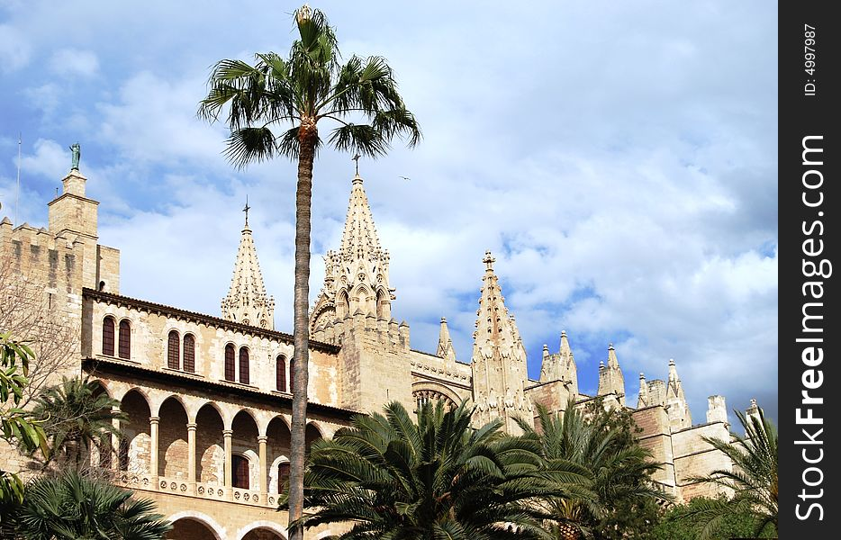 Gothic Cathedral and palm alley