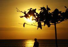 Free Sunset On The Coast Royalty Free Stock Photo - 49910895