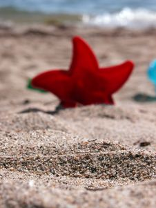 Free At The Beach 2 Stock Photo - 55850