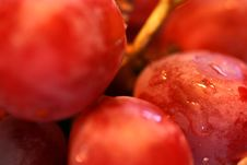Free Grapes 1 Royalty Free Stock Photos - 56408