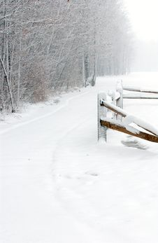 Free Winter Path Royalty Free Stock Photo - 58675