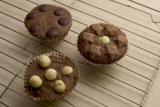 Free Chocolate Cupcakes Stock Images - 58864