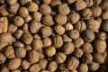 Free Walnuts Royalty Free Stock Photo - 502355