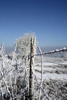 Free Frozen Fence Stock Photo - 500860