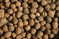 Free Walnuts Royalty Free Stock Photo - 502355