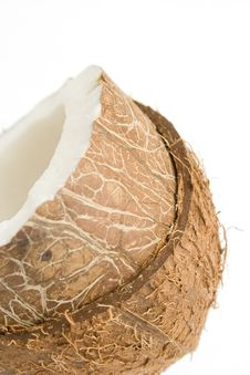 Free Coconut On White Stock Photo - 502440