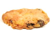 Free Biscuit Stock Photos - 504233