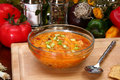 Free Chicken Tortilla Soup Stock Image - 5000641