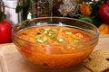 Free Chicken Tortilla Soup Stock Photos - 5000663