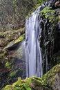 Free Park Waterfall Royalty Free Stock Photo - 5001625