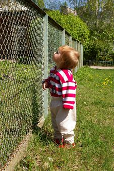 Free Girl Costs On A Grass Near A Fence Royalty Free Stock Photos - 5000568